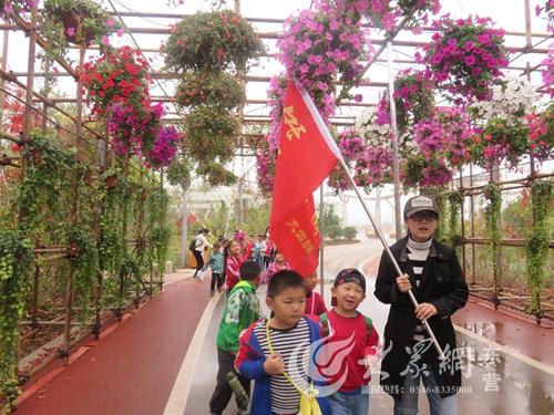东凯幼儿园:走进植物园 感受秋天美
