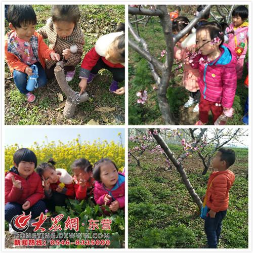 """稻庄镇西水幼儿园开展""""寻找春天的色彩""""主题活动"""