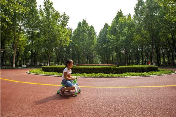 文明在这里毕业--广饶县v文明行政执法局同学创起航给文明留言高中图片