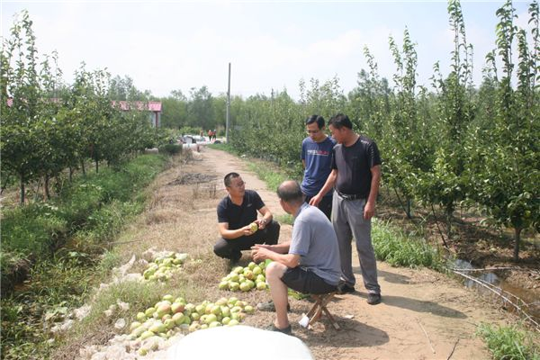 http://www.k2summit.cn/yishuaihao/938674.html