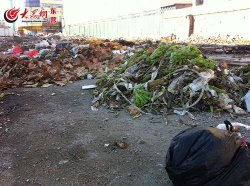 东营/拆迁完毕的花鸟鱼虫市场旧址,俨然成为了一处天然的垃圾存放处...