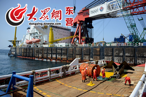 海洋石油981 锚