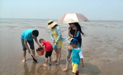 天气逐渐炎热 去海滩拾贝成为不少东营市民出游首选
