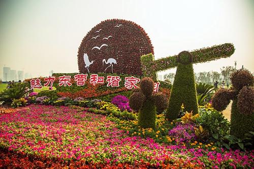 国庆节期间东营植物园接待游客近20万人