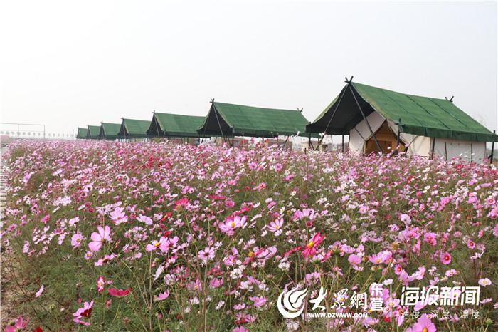 http://www.edaojz.cn/yuleshishang/302296.html