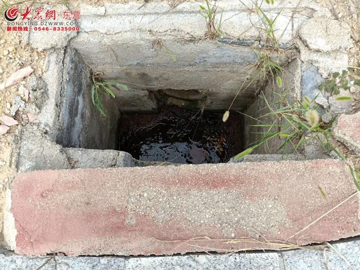 垦利 人行道多处井盖缺失 存安全隐患
